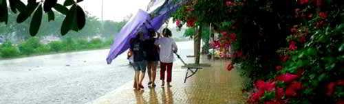 дождь и зонт
