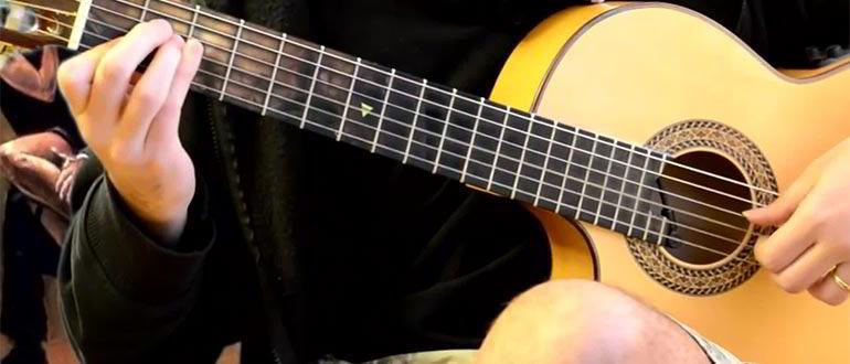 гитарист кто это