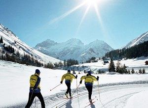 Какими качествами должен обладать лыжник