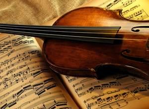 Кто может стать музыковедом