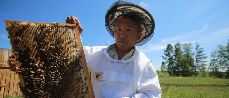 Пчеловод кто это