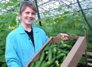 Изображение - Кто выращивает овощи 023666
