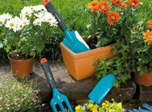 Какие специальности необходимо знать садоводу