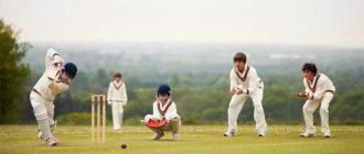 Крикет что это