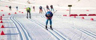 лыжные гонки что это